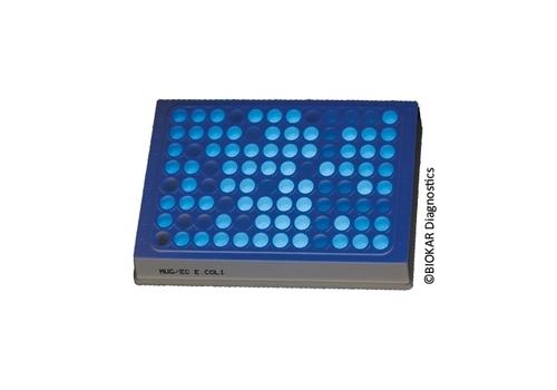 Microplate MUG/EC